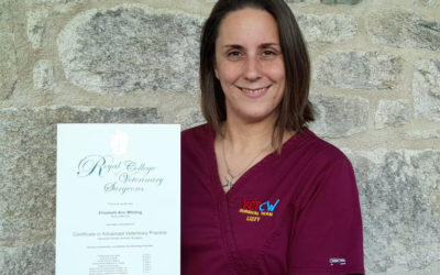 Lizzy's Royal College of Veterinary Surgeon's Certificate!
